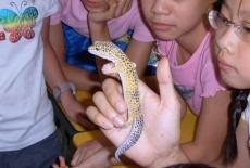 activekids st pauls co-ed college primary school science adventures class aberdeen