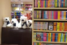 bookazine bookstore central books reading