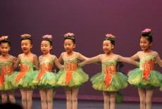 Da Di Mandarin Arts Education Center Central Chinese Dance