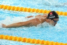 Harry Wright International kids swim competitive Kennedy Town Central and Western