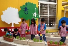 Tutor Time International Nursery and Kindergarten School Yuen Long